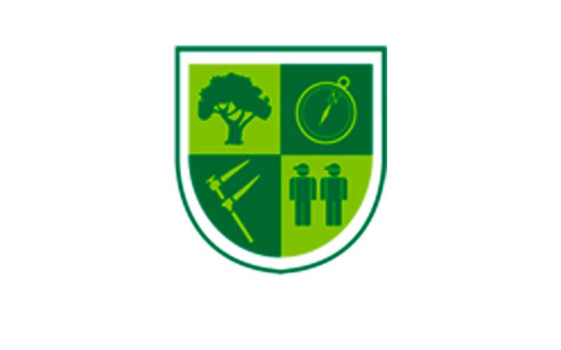 Árbol: Compromiso ecológico con el bosque, la base de nuestro trabajo.